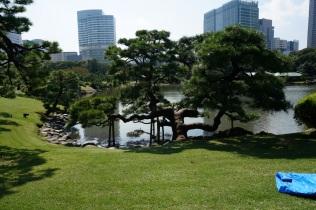 Vu dans le parc