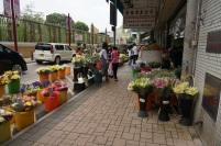 Beaucoup de choix de fleurs