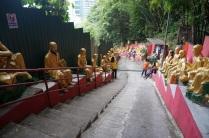 Des bouddhas...