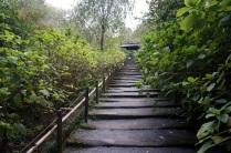 L escalier pour se rendre au temple