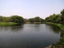 L'un des lacs du parc