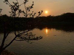 Un coucher de soleil dans le parc