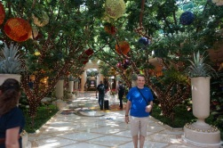 Les jardins du Wynn