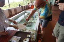 Richard choisit une huître