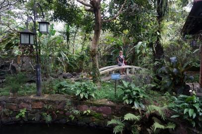 Le jardin du resto du midi