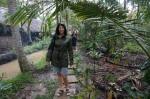 Ballade dans la jungle sous la pluie