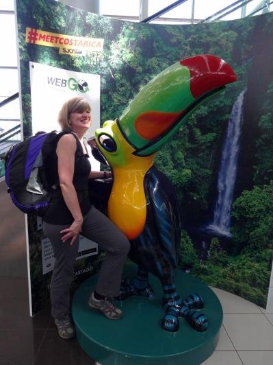 Un toucan plus grand que nature