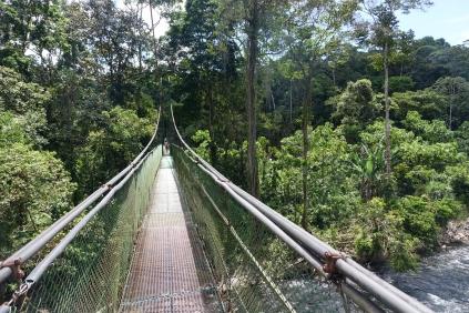 Retour sur le plus long pont suspendu du pays
