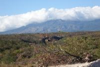 Le nuage sert de couverture au volcan