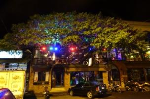 Un arbre dans un restaurant...tres original