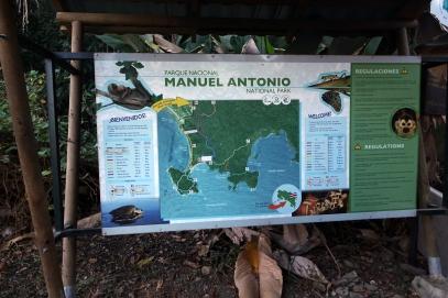 Tot le matin, vite au parc Manuel Antonio