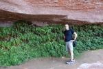Les jardins suspendus qui poussent sous le roc