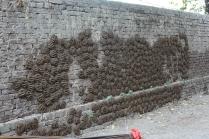 Un mur de bouse de vaches, ne pas vous s'appuyer