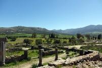Plusieurs des colonnes de ce site ont été utilisées pour des constructions à Meknes
