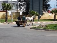 Transport scolaire du coin