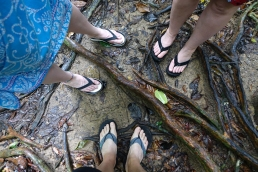 DIfficile de marcher à travers les racines en sandales