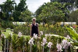 Une visite du jardin botanique, mais la chaleur a eu raison de nous