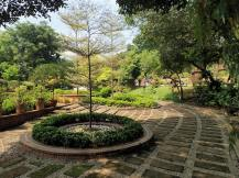 Une promenade dans un jardin