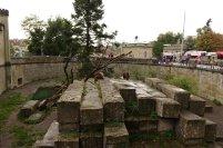 L ancien parc des ours , l'autre est mieux adapté aux ours mais moins pour les visiteurs.